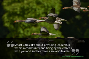 A picture of some flying geese - The Smart City is about providing leadership within a community