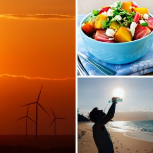Food-Water-Energy