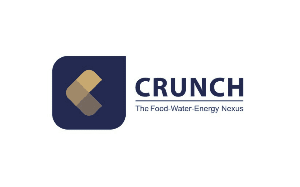 CRUNCH – Our new international project