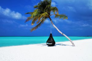 Picture of a single palm tree with a hammock seat underneath on a tropical island.